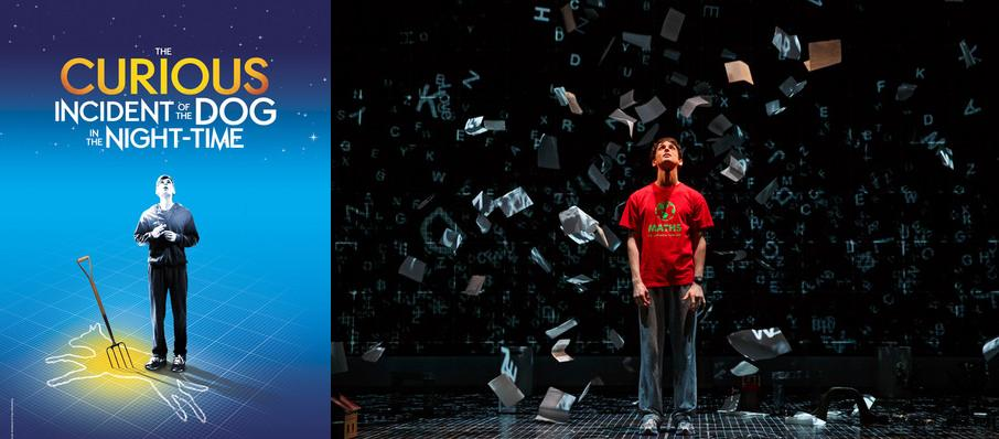 The Curious Incident of the Dog in the Night-Time at Ahmanson Theater