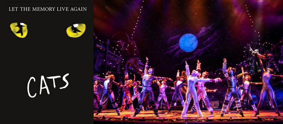 Cats at Pantages Theater Hollywood