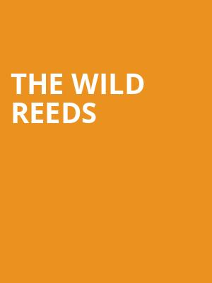 The Wild Reeds at The Masonic Lodge