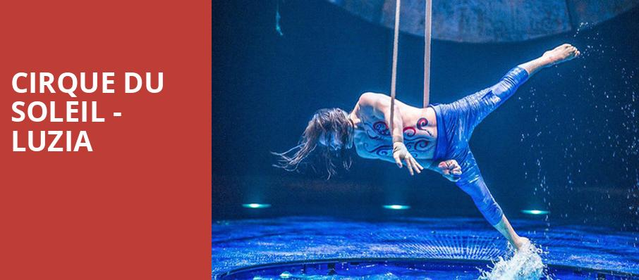 Shows In Los Angeles >> Cirque Du Soleil Luzia Grand Chapiteau At The Dodger Stadium