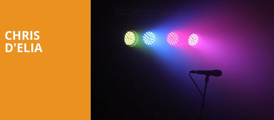 Chris DElia, The Wiltern, Los Angeles
