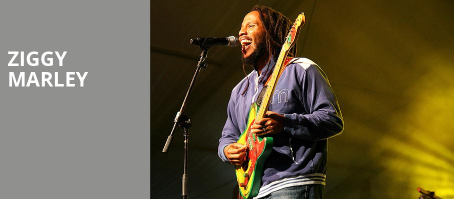 Ziggy Marley, Spotlight 29 Casino, Los Angeles