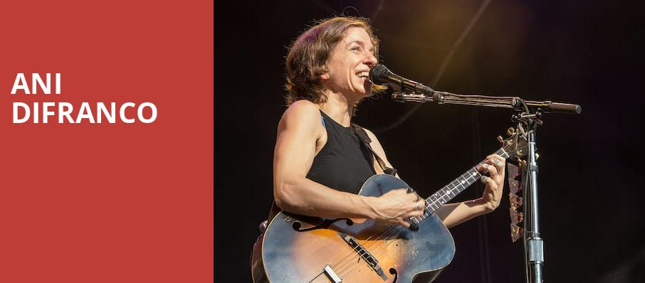 Ani DiFranco, The Observatory, Los Angeles