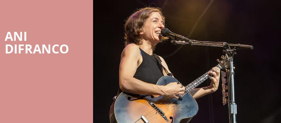 Ani DiFranco, The Downtown Palace Theatre, Los Angeles